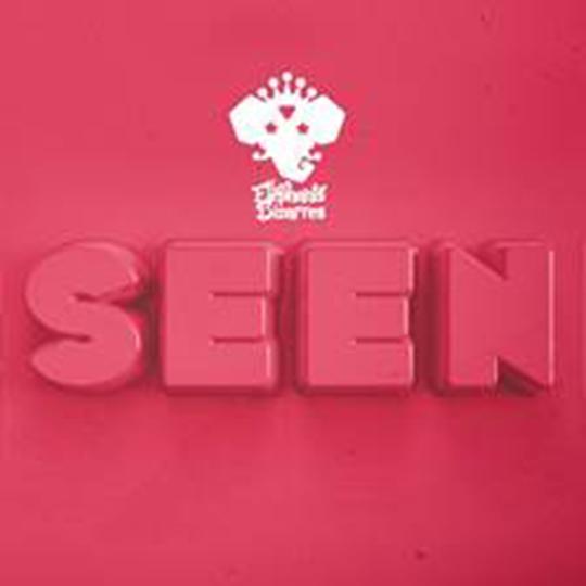 Les Elephants Bizarres a lansat albumul 'SEEN'