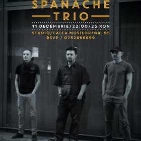 Concert Sebastian Spanache Trio in Club STUDIO