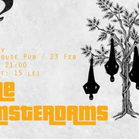 Concert al trupei The Amsterdams la Brasov