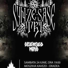 Concert Syn Ze Sase Tri la Oradea