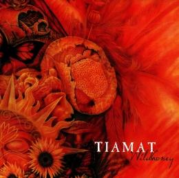 CD straine - TIAMAT - WILDHONEY #0002649