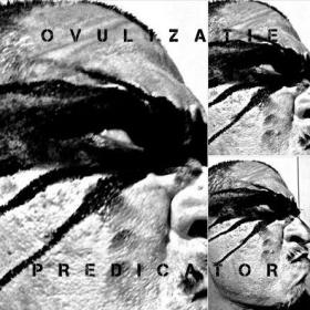 PREDICATOR - OVULIZATIE